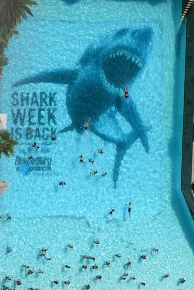Sharkpool1