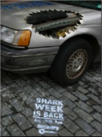 Sharkweek_car