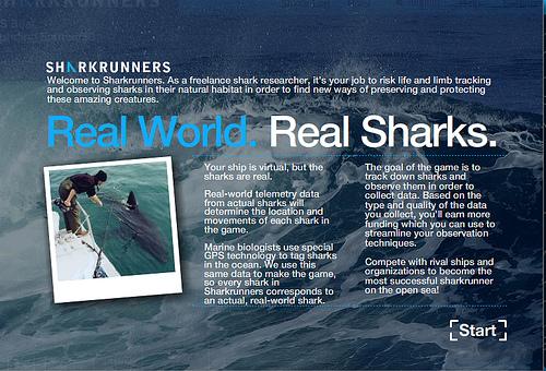 SharkRunners