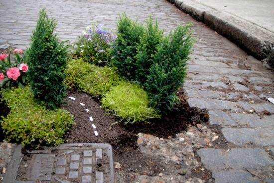 Miniature-garden10-550x367